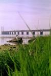 Öresundsbron 1999|Foto: Gerd Persson