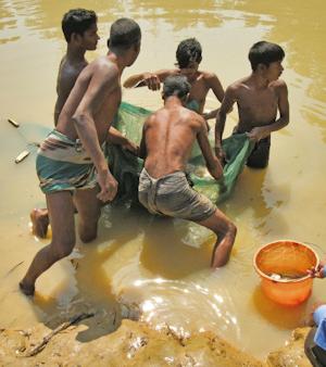 Fiskarpojkar i Bangladesh|: Terry Cannon
