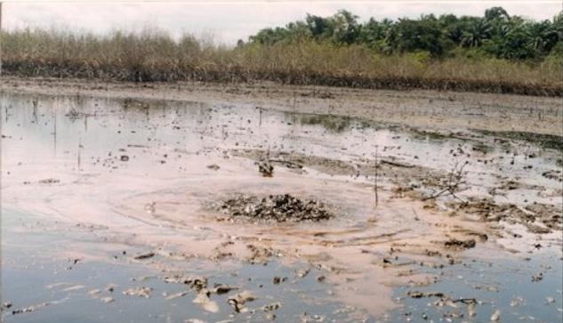 Oljeförorenat vatten  i Bodo 50 km från Port Harcourt.