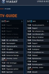 TV- och Hockeystrul